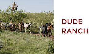 Amarillo, Texas: Dude Ranch