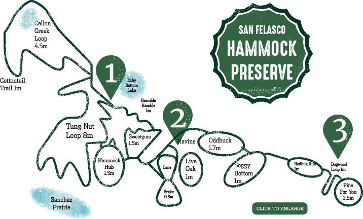 San Felasco Hammock Preserve map