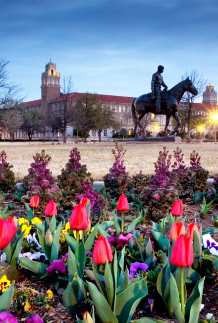 Lubbock, Texas, Texas Tech University