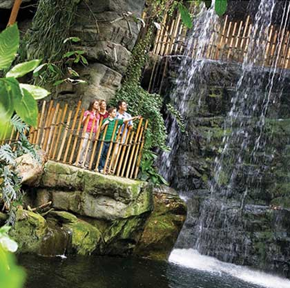 The Henry Doorly Zoo in Omaha, Nebraska is home to North America's largest indoor rainforest