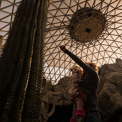 Visit the world's largest indoor desert under the world's largest geodesic dome at the Henry Doorly Zoo in Omaha, Nebraska