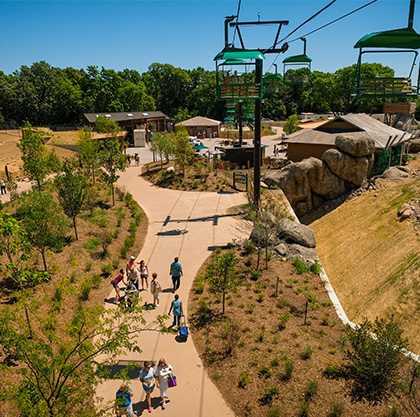 Get a bird's eye view of the world's best zoo on the Skyfari at the Henry Doorly Zoo in Omaha, Nebraska