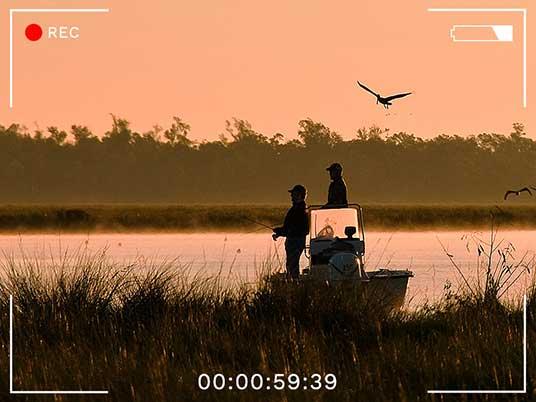 St. Tammany Parish, Louisiana, outdoors, Big Branch Marsh National Wildlife Refuge