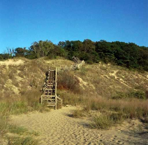 A wooden stairway climbs up a sandy dune in Indiana Dunes, Indiana