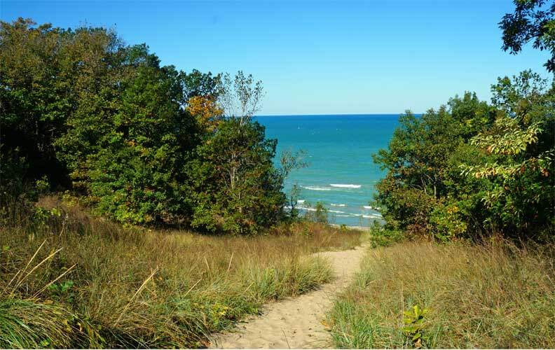 A sandy path winds through lush greenery on the three-dunes trail in Indiana Dunes, Indiana
