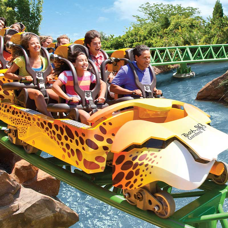 The Cheetah Run rollercoaster at Busch Gardens Tampa Bay in Central Florida