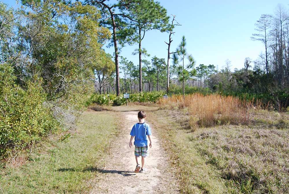 A young boy walking through nature at the Disney Wilderness Preserve in Kissimmee, Florida