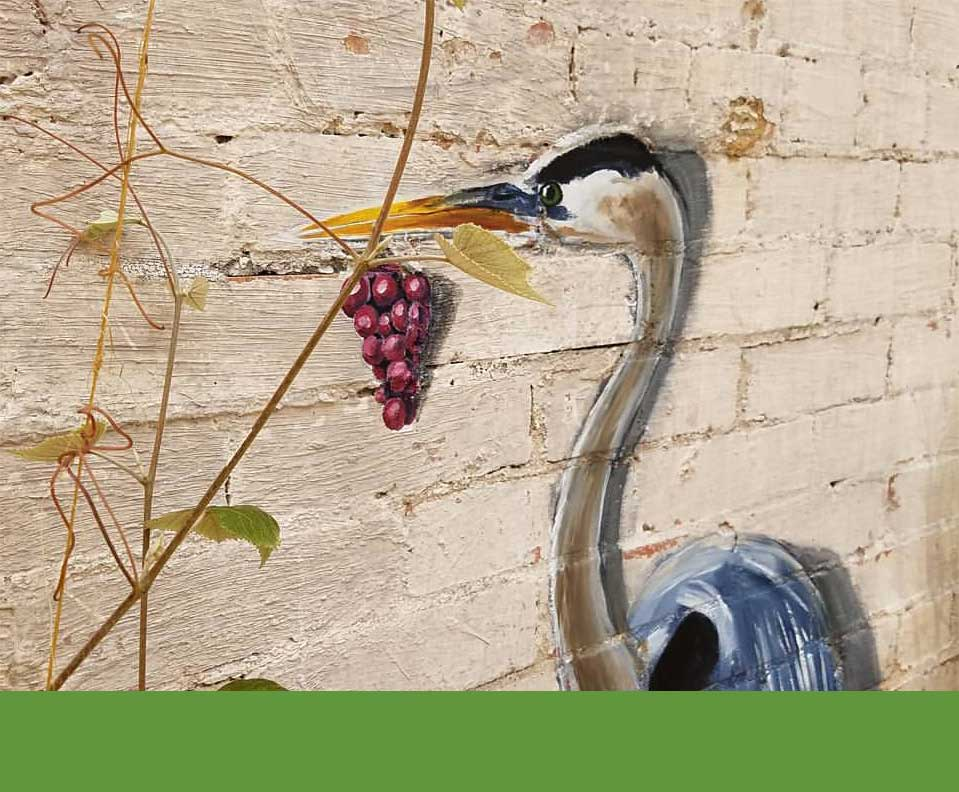 Painting of heron with grapes on a wall at Blue Dahlia Bistro in San Marcos, Texas