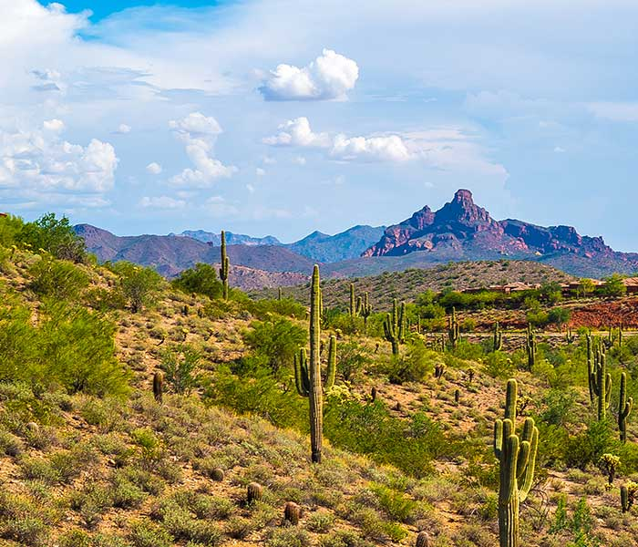 Desert and mountain view in Fountain Hills, Arizona