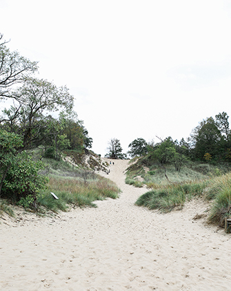 A sandy path surrounded by greenery rises on a sand dune in Indiana Dunes, Indiana