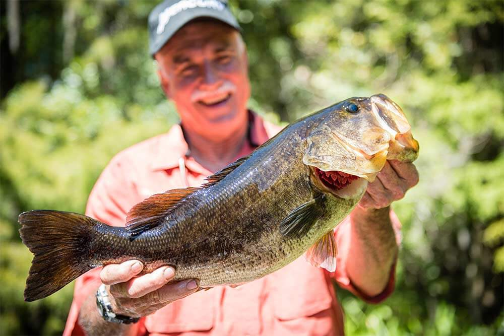 A man holds a bass he caught while fishing at Arbuckle Creek near Lake Istokpoga in Sebring, FL