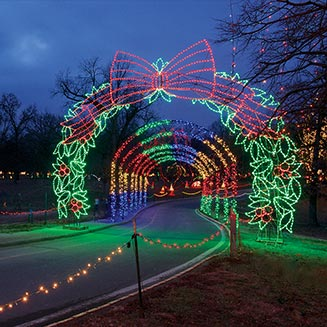 Winter Wonderland, Tilles Park courtesy of Dan Donovan