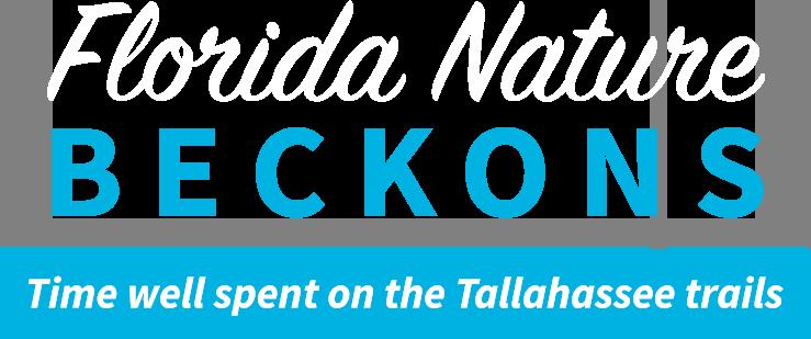 Florida Nature Beckons