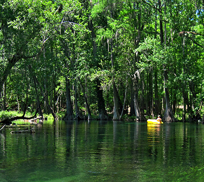 A kayaker paddles in the tranquil waters of Ichetucknee State Park near Lake City, Florida.