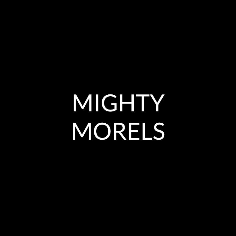 Mighty Morels